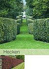 hecken_kl