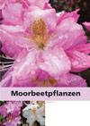 Spezial-Katalog Moorbeet